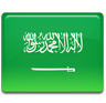 Saudi Arabia Non US Business Visa - Expedited Visa Services